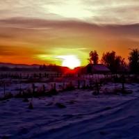 Sunrise on Dallas Road at ATI Farm